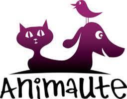 Codes Promo Animaute
