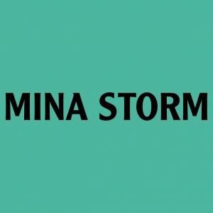 Codes Promo Minastorm